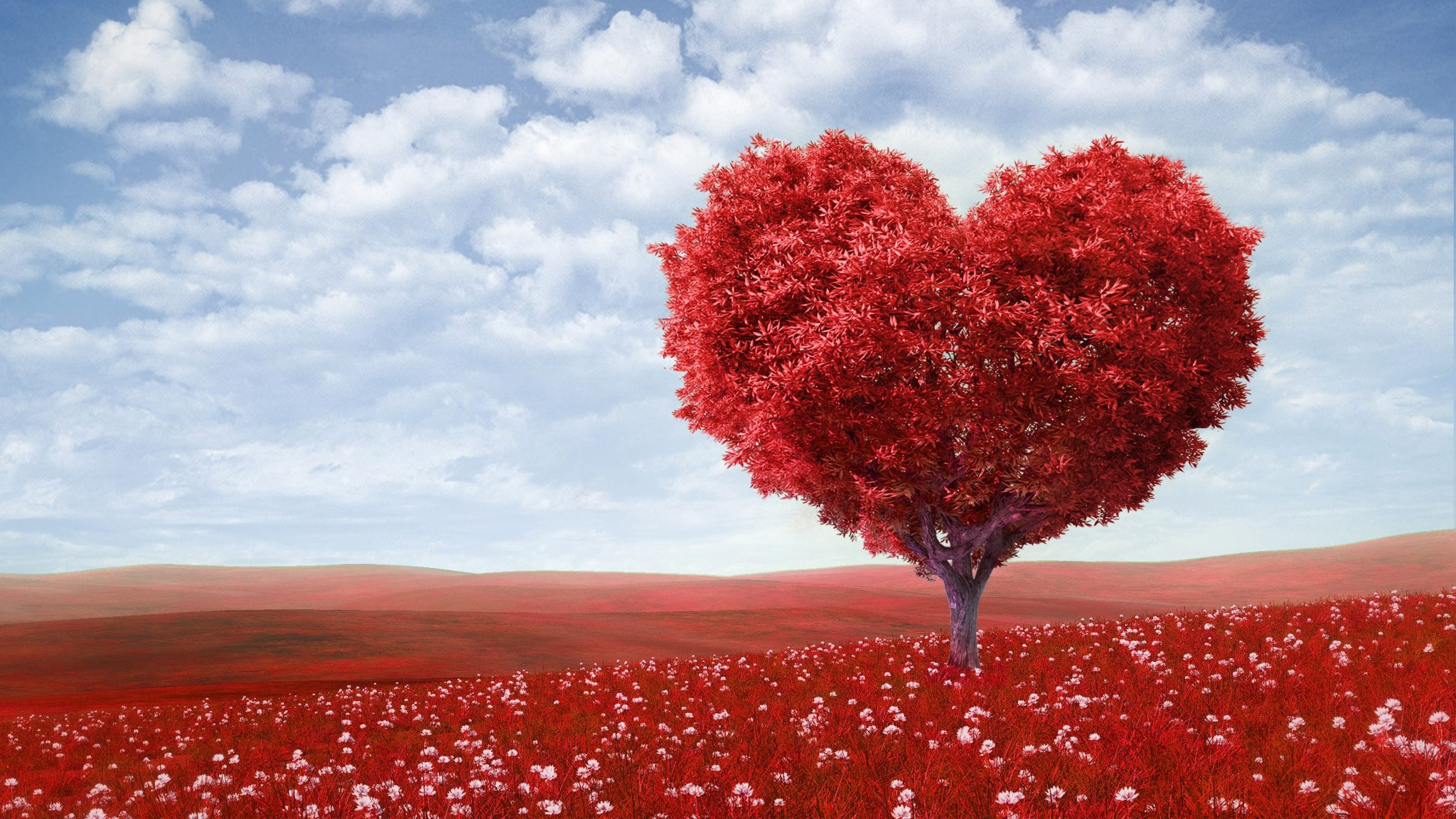 "Thought Of The Month February 2021 ~ ""The Love Month"""